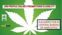 Sub-Inspector-in-Central-Bureau-of-Narcotics