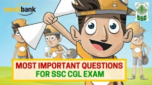 Most Important Questions for SSC CGL Exam
