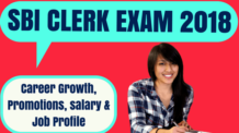 SBI Clerk Career Growth and Job Profile