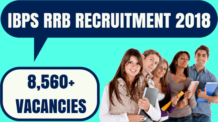 IBPS RRB Recruitment