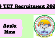 Chhattisgarh TET Recruitment